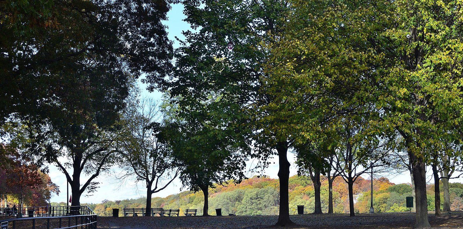 Van Cortlandt Park in the Bronx
